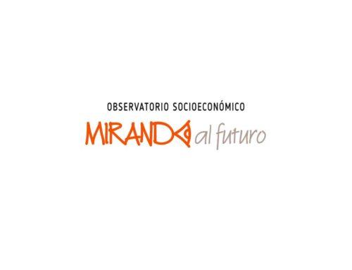 Estatutos del Observatorio Socio Económico Mirando al futuro